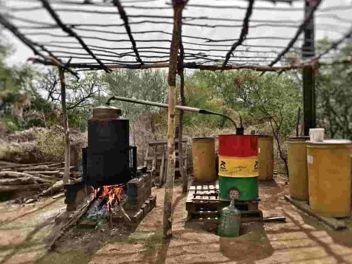 destilador y condensador casero para elaboración de bacanora