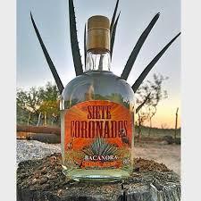 botella de bacanora siete coronoados