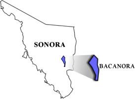 Bacanora Sonora